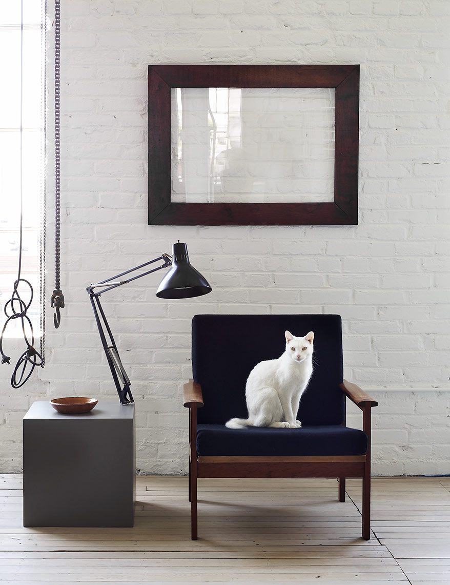 a white cat sits on a black chair in an urban loft