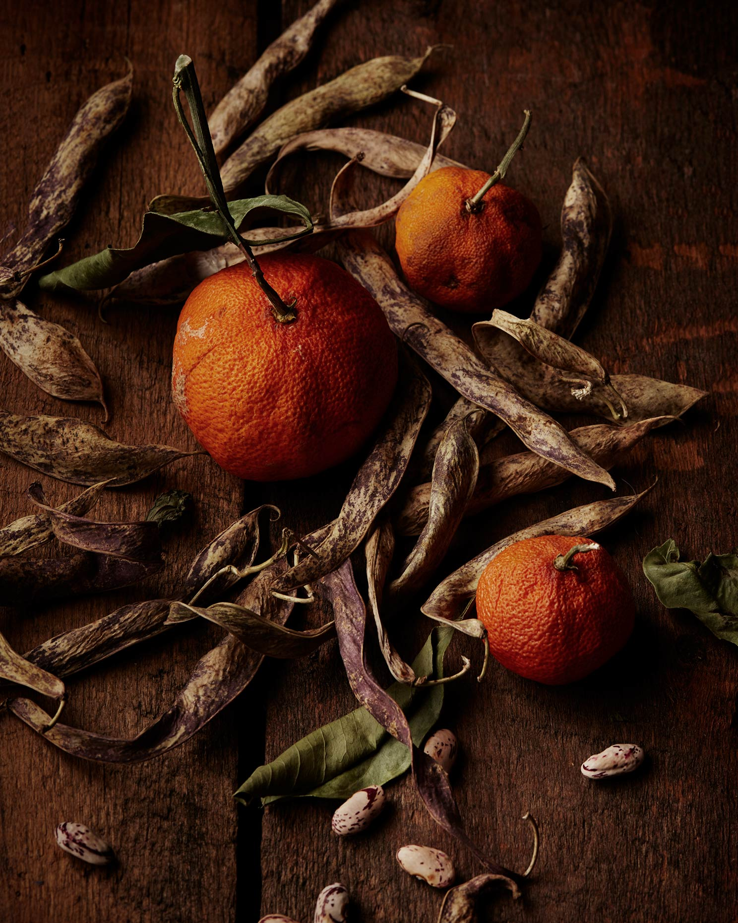 still life photograph dried oranges and beans on an old rustic background
