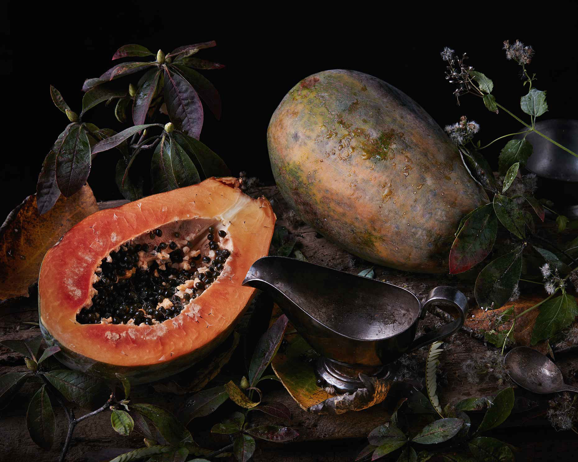 Moody colorful still life photograph of papaya and garden weeds.