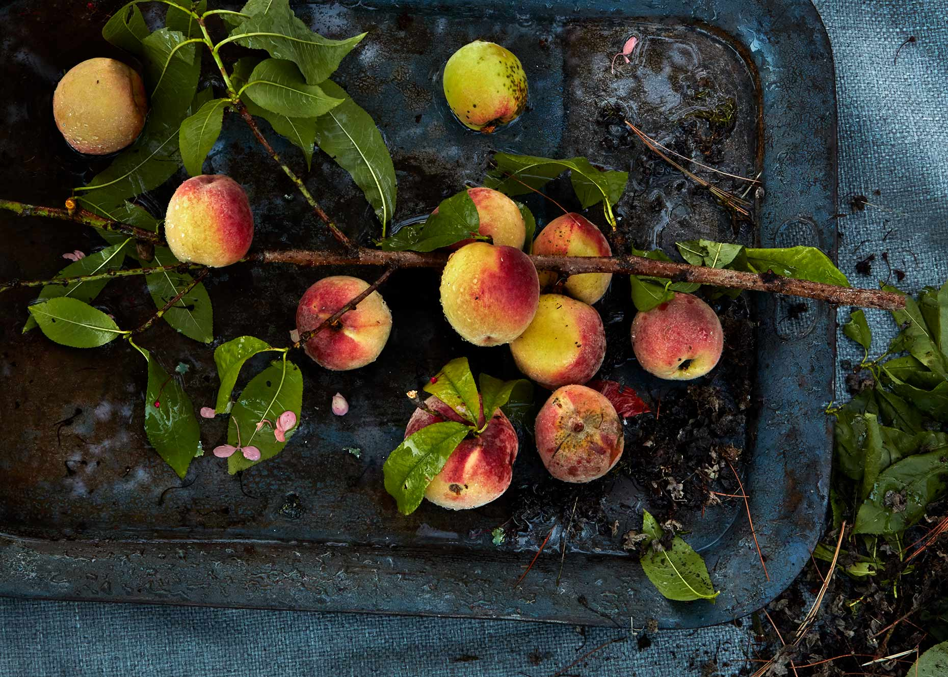 Peach branches shown on a rustic metal tray.