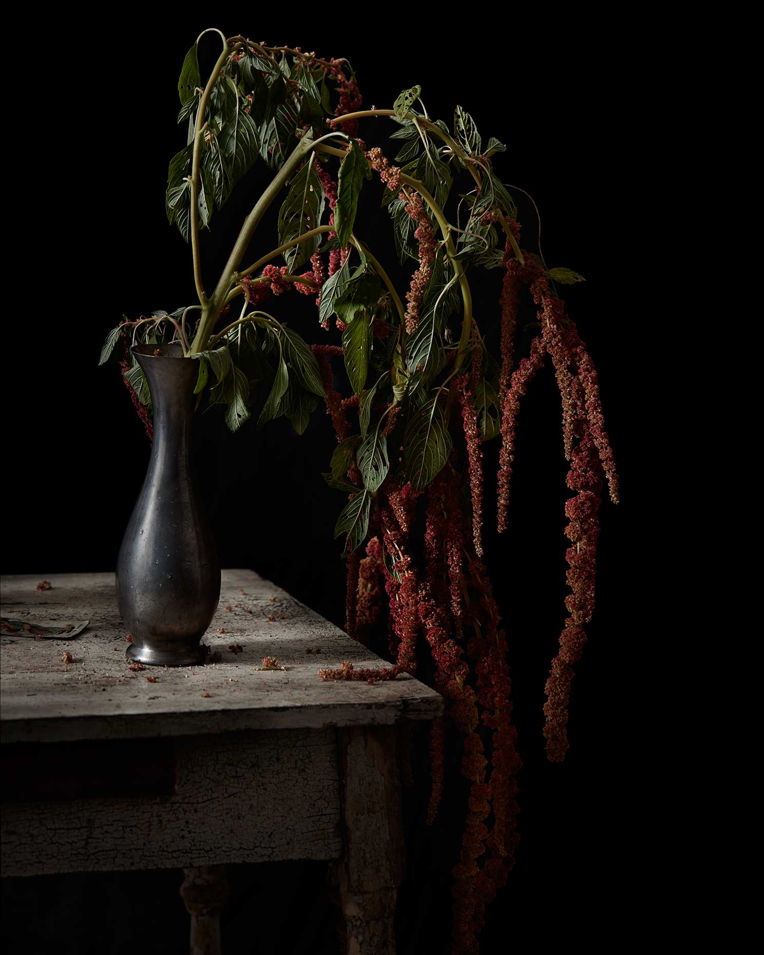 Dark moody red floral still life photograph